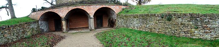Rustic structure in a field