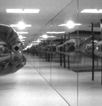 Inter-reflecting mirrors