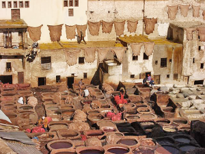 View showing buildings behind, with hides hung to dry