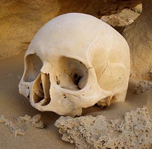 Human skull in sand