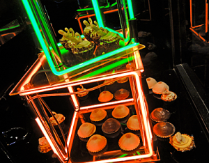 Cup cakes with neon lights