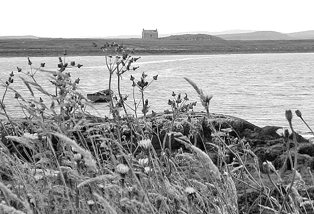 Lone house across the water, black and white, boat and plants in the foreground