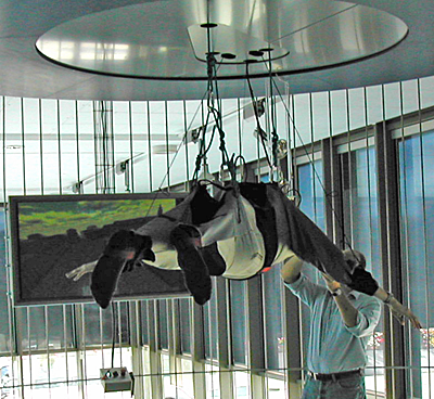 person trussed up in elaborate device and hanging from the ceiling in front of a computer monitor