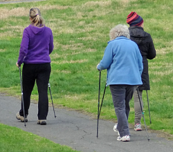 Three female walkers with hiking poles, walking away from the camera