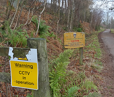 Forest area, with track and sign: Warning CCTV in operation.