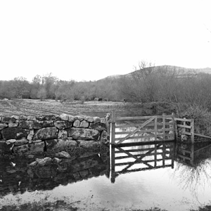 Dartmoor fields December 2013. Flooded field, gate, stone wall, hills behind, black and white picture